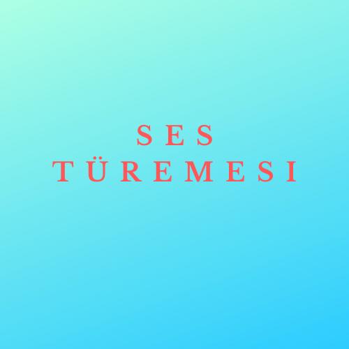 SES TÜREMESİ