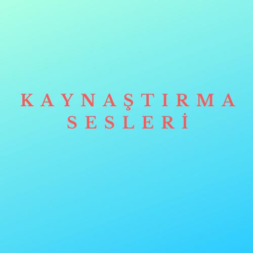 KAYNAŞTIRMA SESLERİ