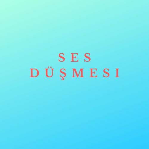 SES DÜŞMESİ